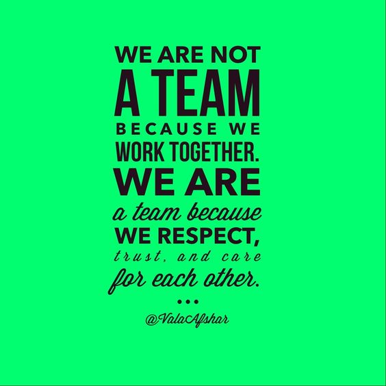 We are not a team because we work together. We are a team because we respect, trust, and care fo ...