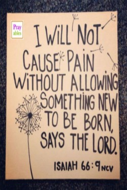 I will not cause pain without allowing something new to be born says the Lord.
