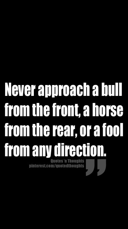 Never approach a bull from the front, a horse from the rear, or a fool from any direction.