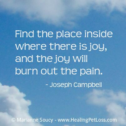 Find the place inside where there is joy, and the joy will burn out the pain.