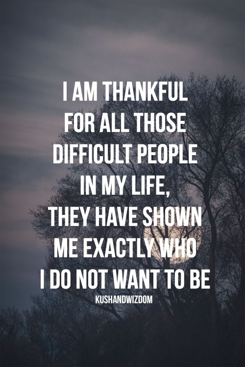 Im Thankful For All Those Difficult People In My Life They Have