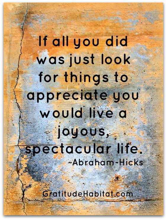 If all you did was just look for things to appreciate you would live a joyous spectacular life.