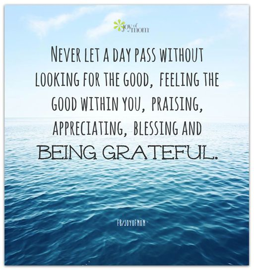 Never let a day pass without looking for the good, feeling the good within you, praising, apprec ...