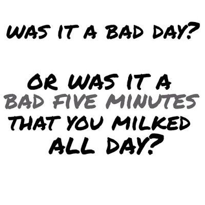 Was it a bad day? Or was it a bad 5 minutes that you milked all day?