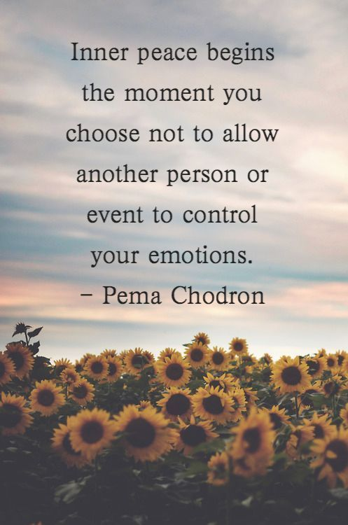 Inner peace begins the moment you choose not to allow another person or event to control your em ...