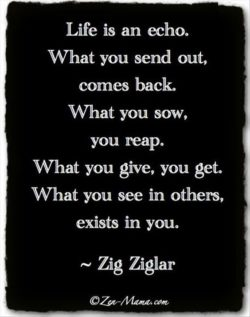 Life is an echo. What you send out, comes back. What you sow, you reap. What you give, you get.  ...