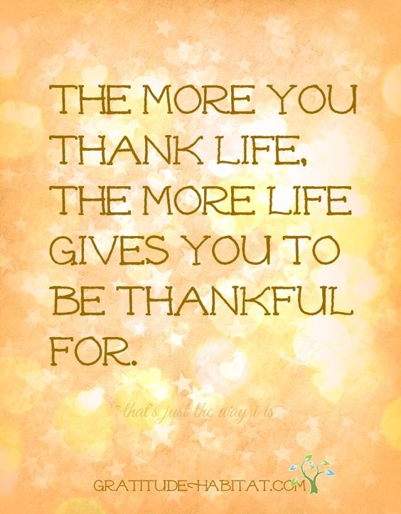 The more you thank life, the more life gives you to be thankful for.