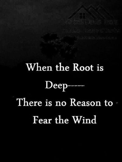 When the root is deep, there is no reason to fear the wind.
