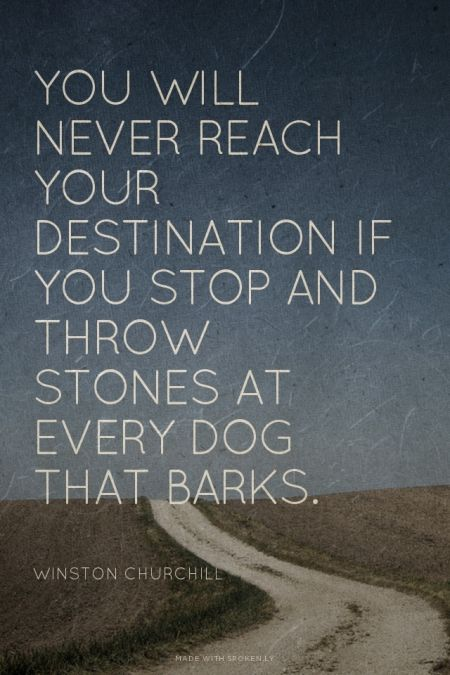 You will never reach your destination if you stop and throw stone at every dark that barks.