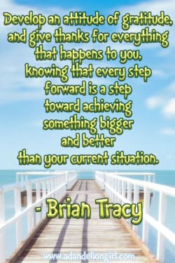 Develop an attitude of gratitude and give thanks for everything that happens to you, knowing tha ...