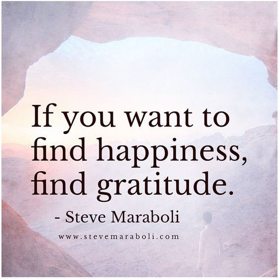If you want to find happiness, find gratitude.