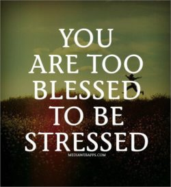 You are too blessed to be stressed.