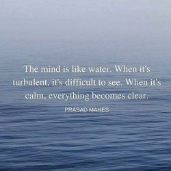 The mind is like water. When it's turbulent, it's difficult to see. When it's  ...