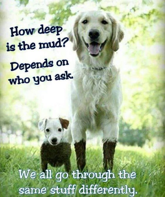How deep is the mud? Depends on who you ask. We all go through the same stuff differently.