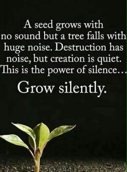A seed grows with no sound but a tree falls with huge noise. Destruction has noise, but creation ...