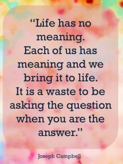 Life has no meaning. Each of us has meaning and we bring it to life. It is a waste to be asking  ...