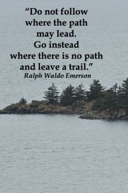 Do not follow where the path may lead. Go instead where there is no path and leave a trail.
