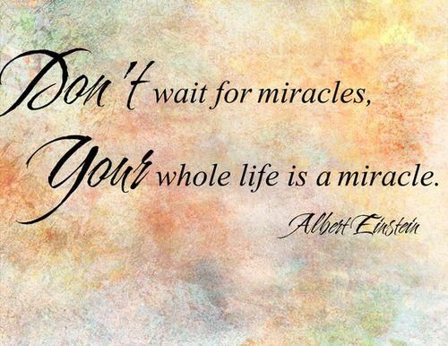 Don't wait for miracles. Your whole life is a miracle.