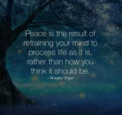 Peace is the result of retraining your mind to process life as it is, rather than how you think  ...