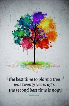 The best time to plant a tree was twenty years ago. The second best time is now.