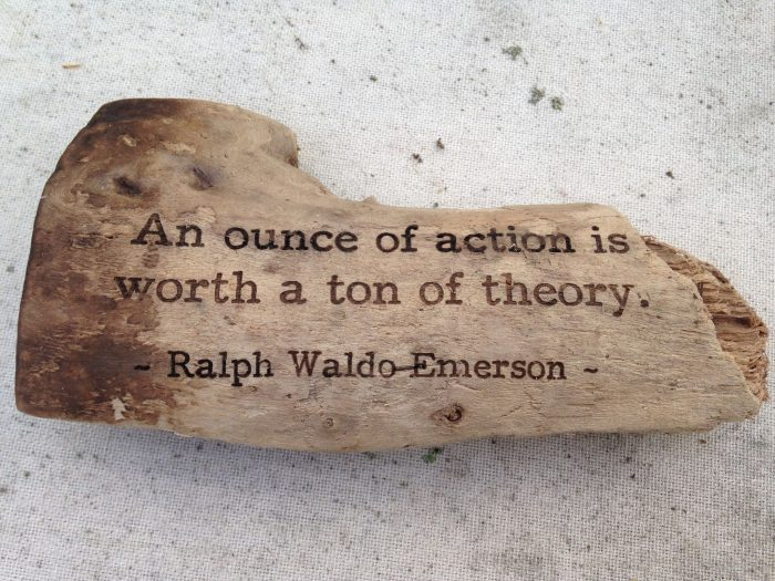 An ounce of action is worth a ton of theory.  – Ralph Waldo Emerson