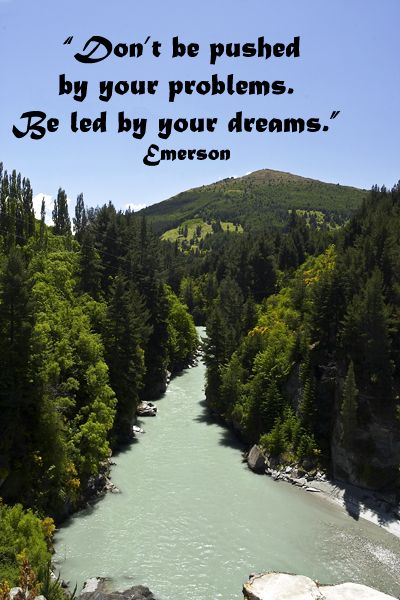 Don't be pushed by your problems. Be led by your dreams.  – Ralph Waldo Emerson