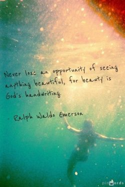Never lose an opportunity of seeing anything beautiful, for beauty is God's handwriting.   ...