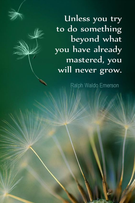 Unless you try to do something beyond what you already mastered, you will never grow – Ral ...