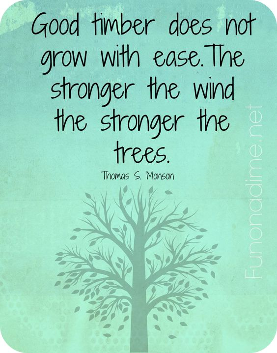 Good timber does not grow with ease. The stronger the wind the stronger the trees.