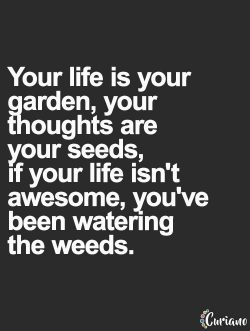 Your life is your garden, your thoughts are your seeds, if your life isn't awesome, you ...