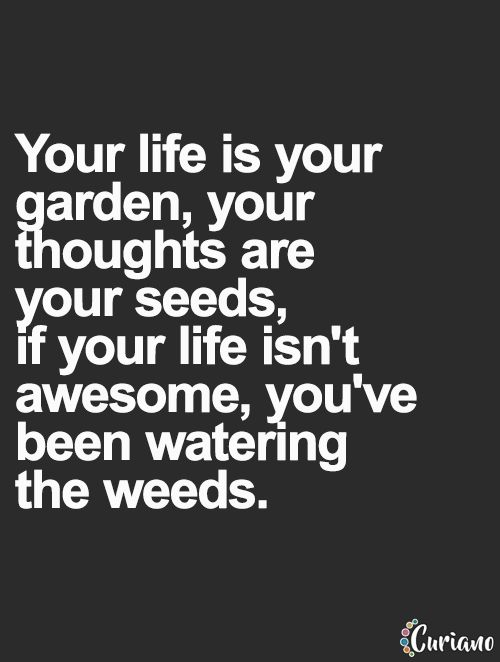 Your life is your garden, your thoughts are your seeds, if your life isn't awesome, you&#8 ...